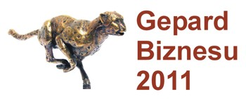 Business-Geparden 2011